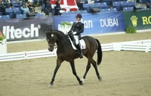 Championnats d'Europe Para Equestre Dressage à Moorsele